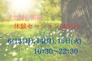 マヤ暦占星術体験6月