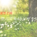 マヤ暦占星術